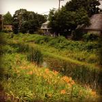 The Delaware Canal path in Lambertville, NJ
