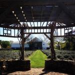 Carousel Lavendar Farm in New Hope Pa